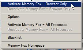 Memoryfox02